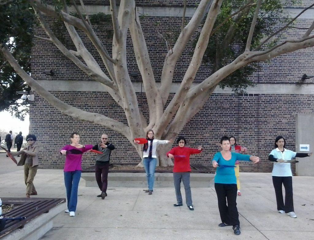 Tai Chi / Wushu / Qigong Training at Macquarie University